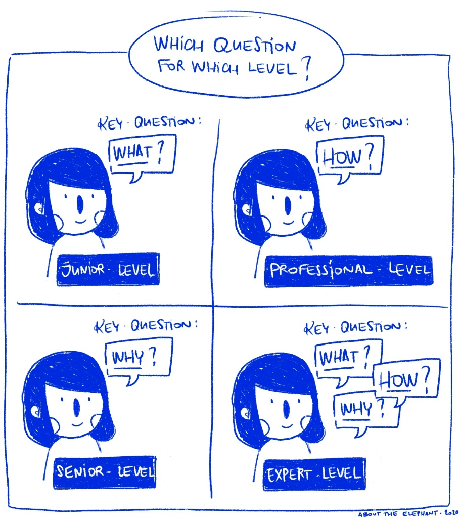 An illustration with the same character asking 4 different questions each time and the information about the ad hoc professional-level.
